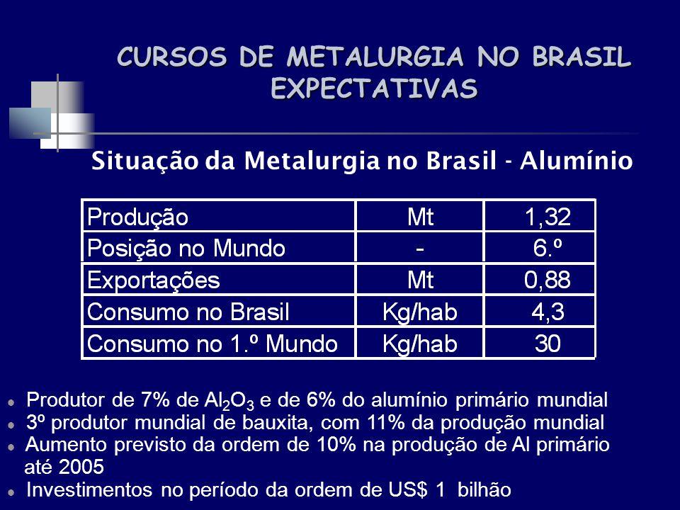 CURSOS DE METALURGIA NO BRASIL EXPECTATIVAS Situação da Metalurgia no Brasil - Alumínio Produtor de 7% de Al 2 O 3 e de 6% do alumínio primário mundia