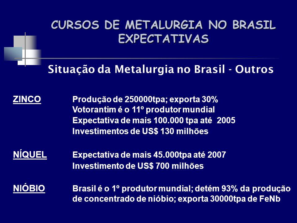 CURSOS DE METALURGIA NO BRASIL EXPECTATIVAS Situação da Metalurgia no Brasil - Outros ZINCO Produção de 250000tpa; exporta 30% Votorantim é o 11º prod