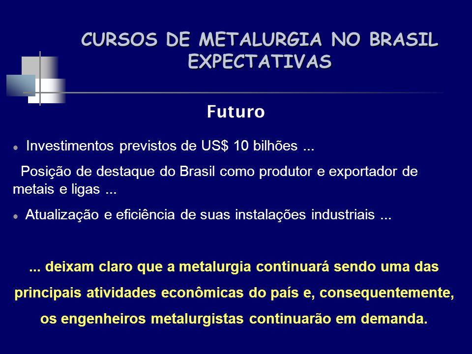 CURSOS DE METALURGIA NO BRASIL EXPECTATIVAS Futuro Investimentos previstos de US$ 10 bilhões... Posição de destaque do Brasil como produtor e exportad