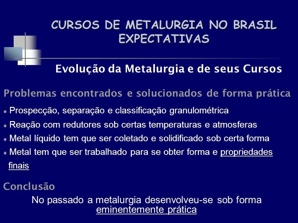 CURSOS DE METALURGIA NO BRASIL EXPECTATIVAS Evolução da Metalurgia e de seus Cursos Problemas encontrados e solucionados de forma prática Prospecção,