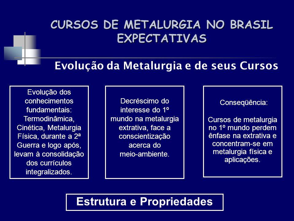 CURSOS DE METALURGIA NO BRASIL EXPECTATIVAS Evolução da Metalurgia e de seus Cursos Evolução dos conhecimentos fundamentais: Termodinâmica, Cinética,