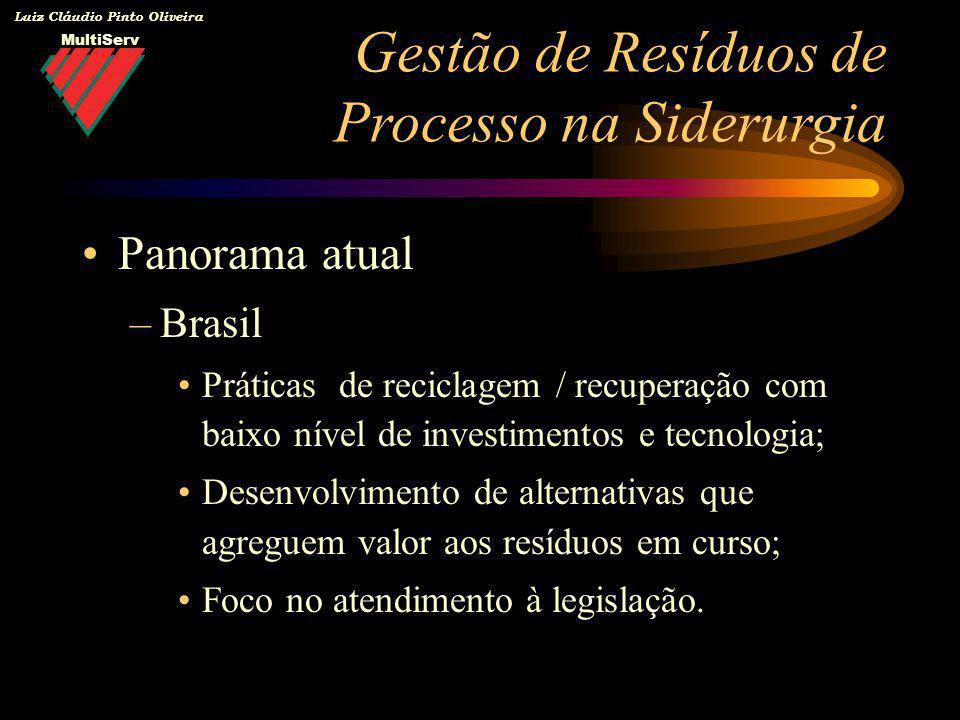 MultiServ Luiz Cláudio Pinto Oliveira Panorama atual –Brasil Práticas de reciclagem / recuperação com baixo nível de investimentos e tecnologia; Desen