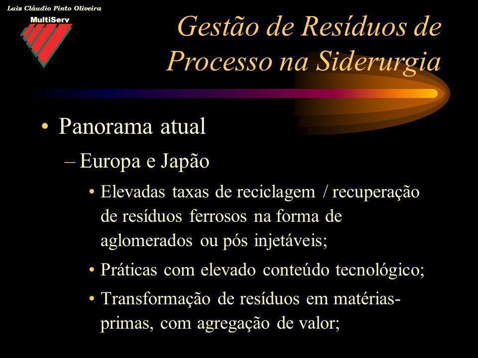 MultiServ Luiz Cláudio Pinto Oliveira Panorama atual –Europa e Japão Elevadas taxas de reciclagem / recuperação de resíduos ferrosos na forma de aglom