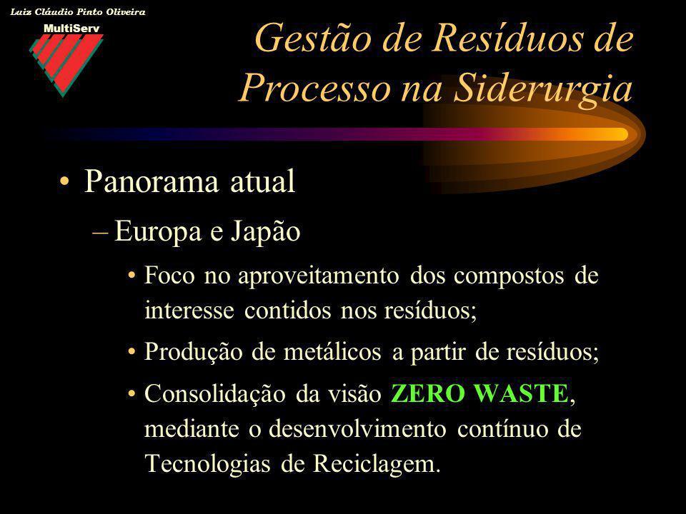 MultiServ Luiz Cláudio Pinto Oliveira Panorama atual –Europa e Japão Foco no aproveitamento dos compostos de interesse contidos nos resíduos; Produção