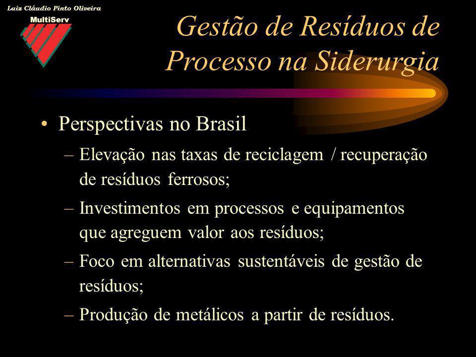 MultiServ Luiz Cláudio Pinto Oliveira Perspectivas no Brasil –Elevação nas taxas de reciclagem / recuperação de resíduos ferrosos; –Investimentos em p