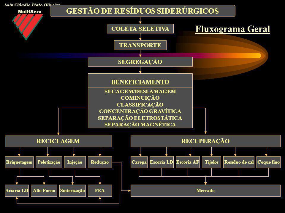 MultiServ Luiz Cláudio Pinto Oliveira COLETA SELETIVA TRANSPORTE SEGREGAÇÃO GESTÃO DE RESÍDUOS SIDERÚRGICOS RECICLAGEM BriquetagemPelotizaçãoInjeçãoRe