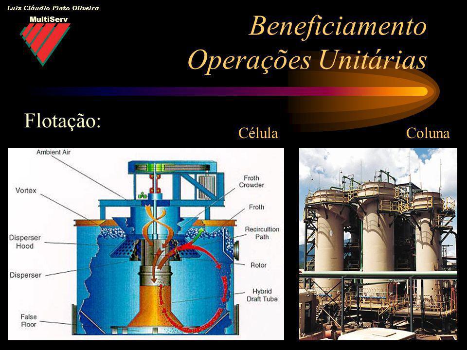 MultiServ Luiz Cláudio Pinto Oliveira Beneficiamento Operações Unitárias Flotação: CélulaColuna