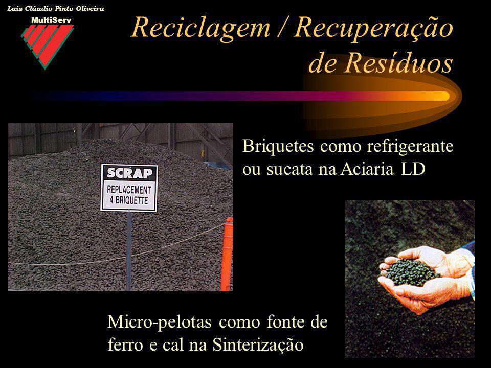 MultiServ Luiz Cláudio Pinto Oliveira Reciclagem / Recuperação de Resíduos Briquetes como refrigerante ou sucata na Aciaria LD Micro-pelotas como font