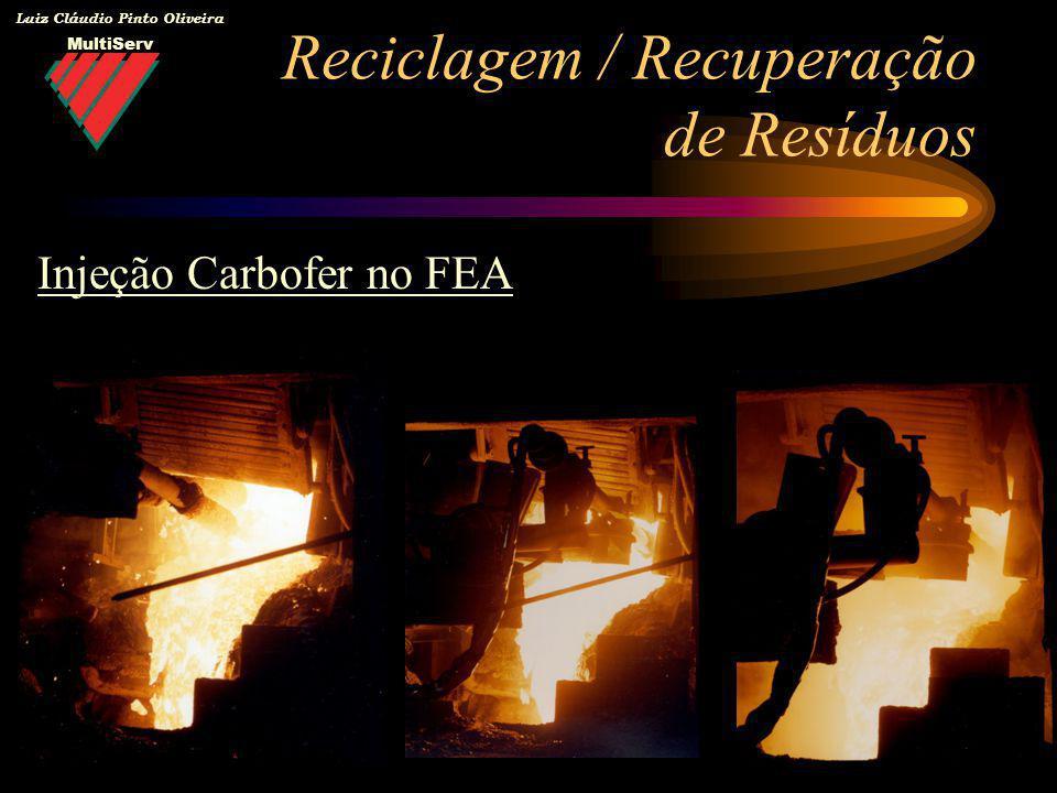MultiServ Luiz Cláudio Pinto Oliveira Reciclagem / Recuperação de Resíduos Injeção Carbofer no FEA