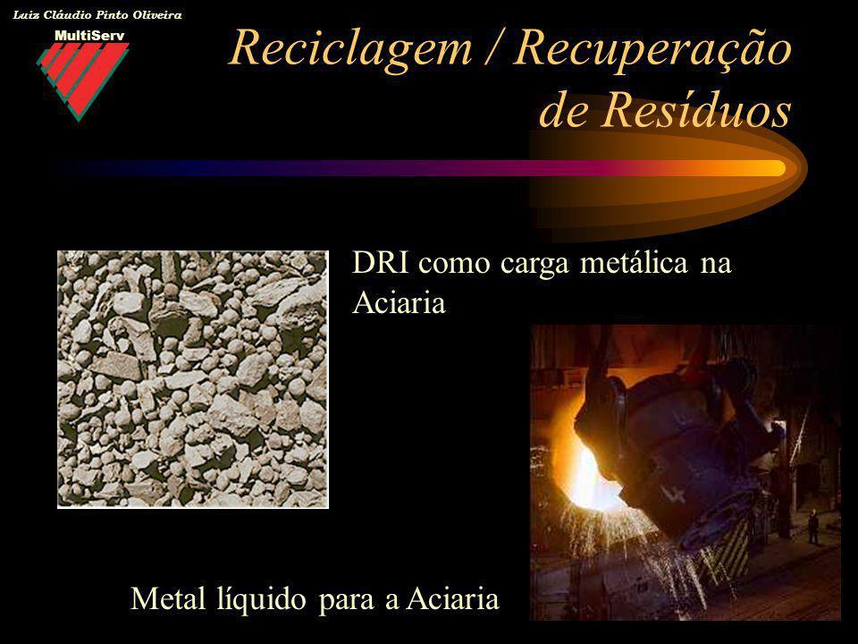 MultiServ Luiz Cláudio Pinto Oliveira Reciclagem / Recuperação de Resíduos DRI como carga metálica na Aciaria Metal líquido para a Aciaria