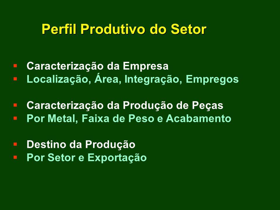 Caracterização da Empresa Localização, Área, Integração, Empregos Caracterização da Produção de Peças Por Metal, Faixa de Peso e Acabamento Destino da Produção Por Setor e Exportação Perfil Produtivo do Setor