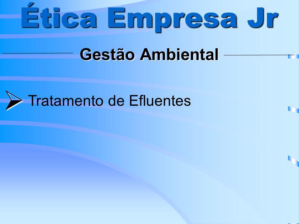 Projeto do Produto/Fábrica Ética Empresa Jr Planejamento e Projeto do Produto Análise de Localização da Fábrica Arranjo Físico Ergonomia, Higiene e Segurança do Trabalho