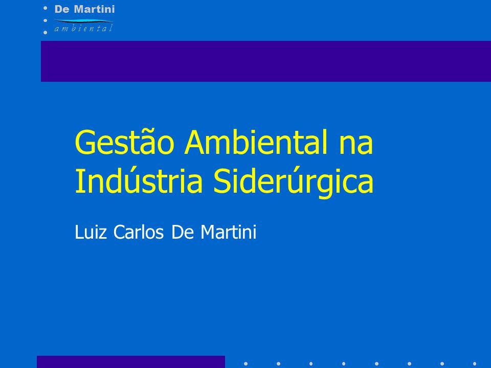 De Martini a m b i e n t a l Gestão Ambiental na Indústria Siderúrgica Luiz Carlos De Martini