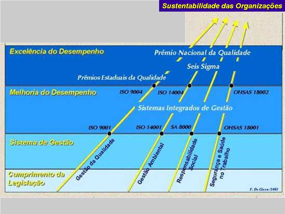 De Martini a m b i e n t a l Sustentabilidade das Organizações