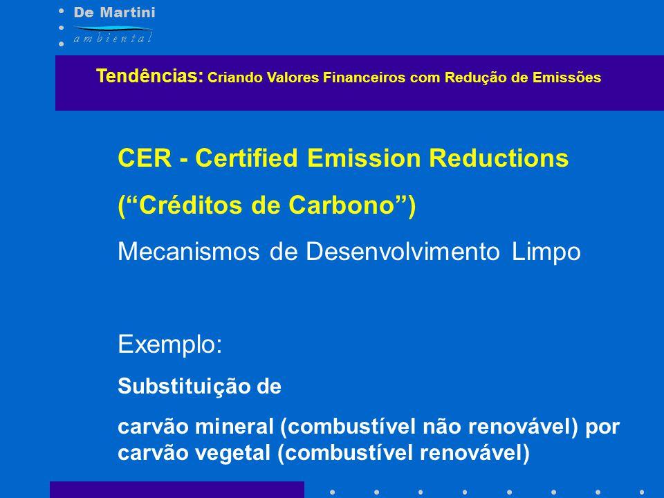 De Martini a m b i e n t a l Tendências: Criando Valores Financeiros com Redução de Emissões CER - Certified Emission Reductions (Créditos de Carbono)
