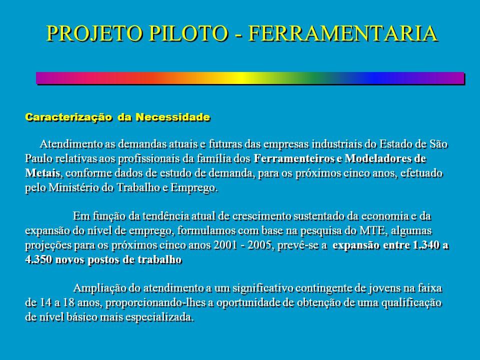 PROJETO PILOTO - FERRAMENTARIA Caracterização da Necessidade Atendimento as demandas atuais e futuras das empresas industriais do Estado de São Paulo
