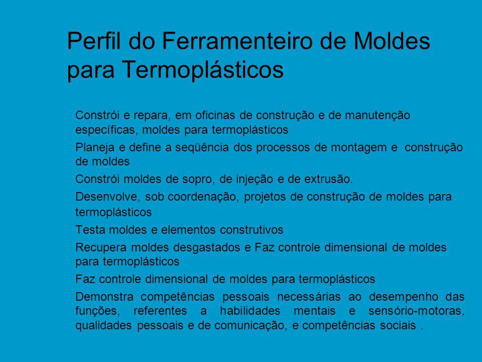 Perfil do Ferramenteiro de Moldes para Termoplásticos n Constrói e repara, em oficinas de construção e de manutenção específicas, moldes para termoplá