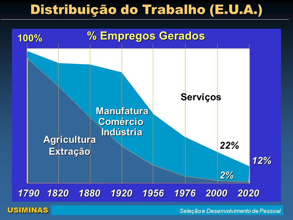 Seleção e Desenvolvimento de Pessoal USIMINAS Distribuição do Trabalho (E.U.A.) 1790182018801920195620001976 % Empregos Gerados 2% 22% 100%AgriculturaExtraçãoManufaturaComércioIndústria 2020 12% Serviços