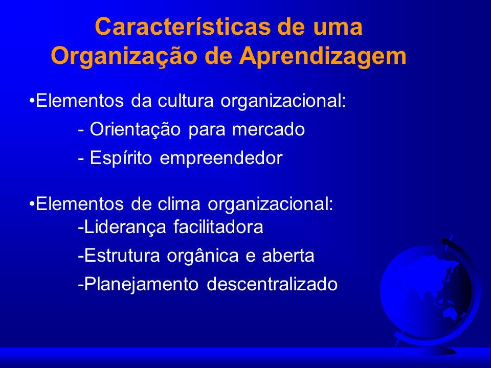 Características de uma Organização de Aprendizagem Elementos da cultura organizacional: - Orientação para mercado - Espírito empreendedor Elementos de