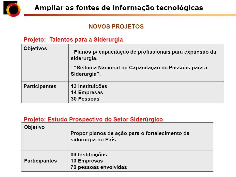 Ampliar as fontes de informação tecnológicas Projeto: Talentos para a Siderurgia Objetivos - Planos p/ capacitação de profissionais para expansão da siderurgia.