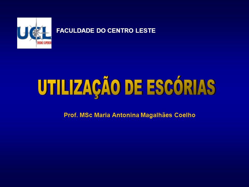 Prof. MSc Maria Antonina Magalhães Coelho FACULDADE DO CENTRO LESTE