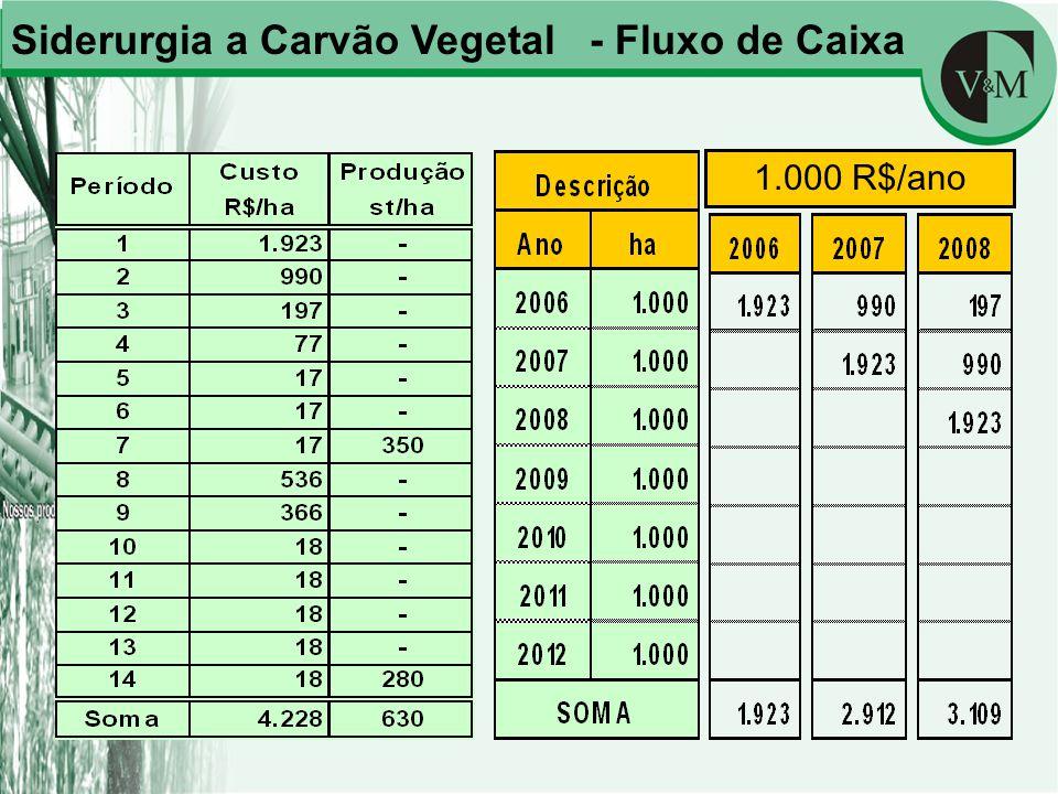 Siderurgia a Carvão Vegetal - Fluxo de Caixa 1.000 R$/ano