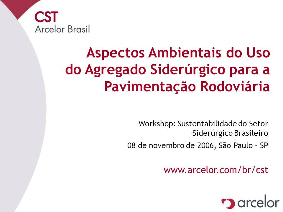 Aspectos Ambientais do Uso do Agregado Siderúrgico para a Pavimentação Rodoviária Workshop: Sustentabilidade do Setor Siderúrgico Brasileiro 08 de nov