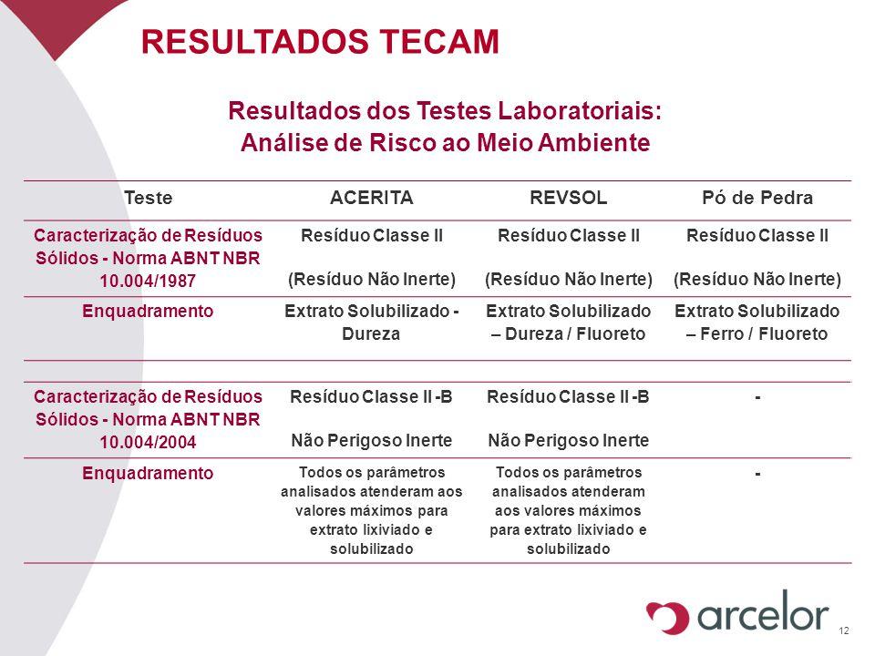 12 RESULTADOS TECAM Resultados dos Testes Laboratoriais: Análise de Risco ao Meio Ambiente TesteACERITAREVSOLPó de Pedra Caracterização de Resíduos Só