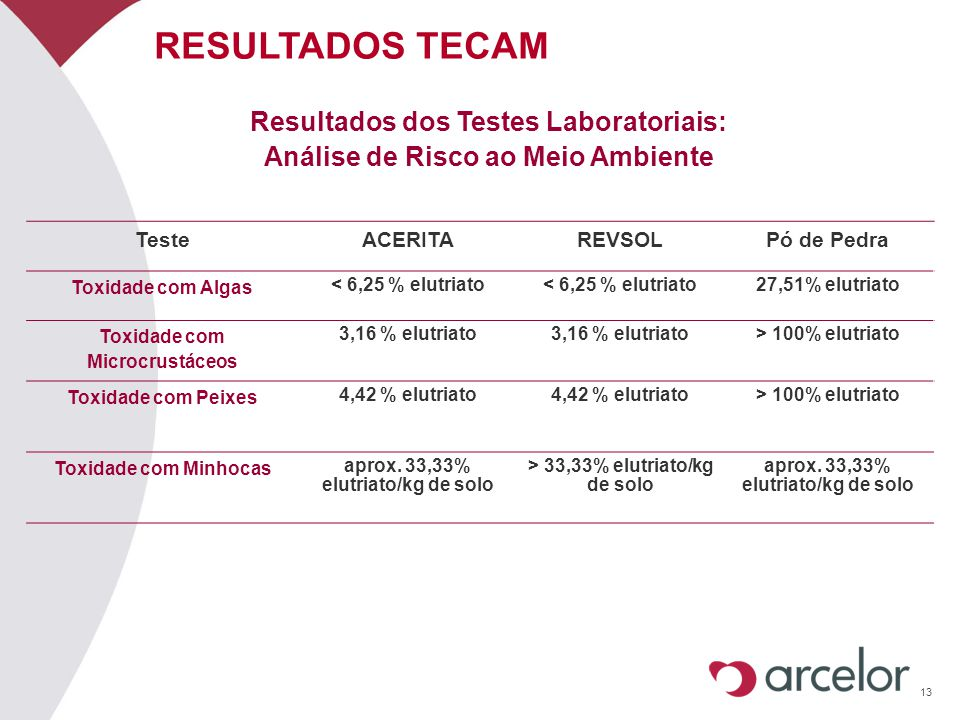 13 RESULTADOS TECAM Resultados dos Testes Laboratoriais: Análise de Risco ao Meio Ambiente TesteACERITAREVSOLPó de Pedra Toxidade com Algas < 6,25 % e