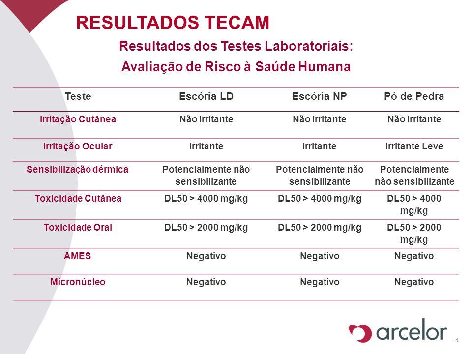 14 RESULTADOS TECAM Resultados dos Testes Laboratoriais: Avaliação de Risco à Saúde Humana TesteEscória LDEscória NPPó de Pedra Irritação CutâneaNão i