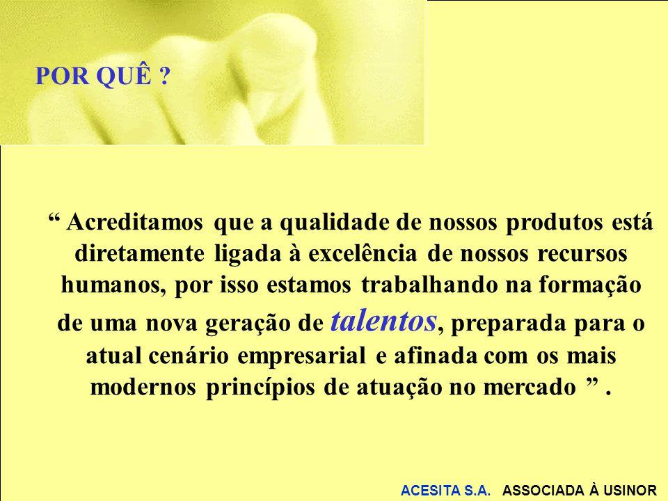 ACESITA S.A.