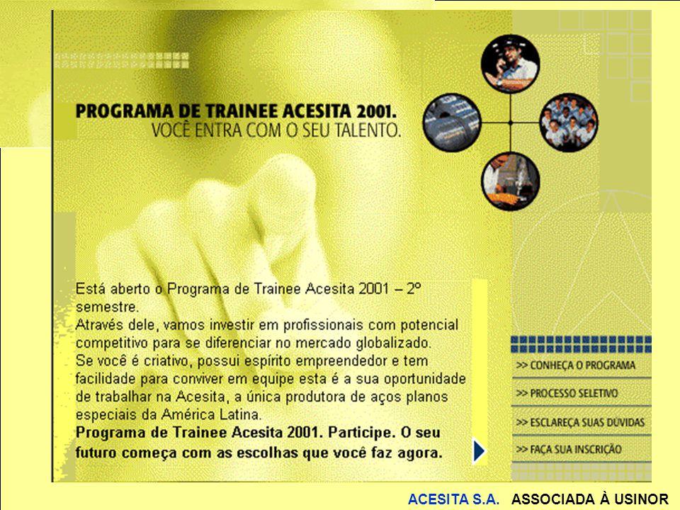 ACESITA S.A.ASSOCIADA À USINOR A visão Planej. estratégico; marketing; logística; e-commerce...