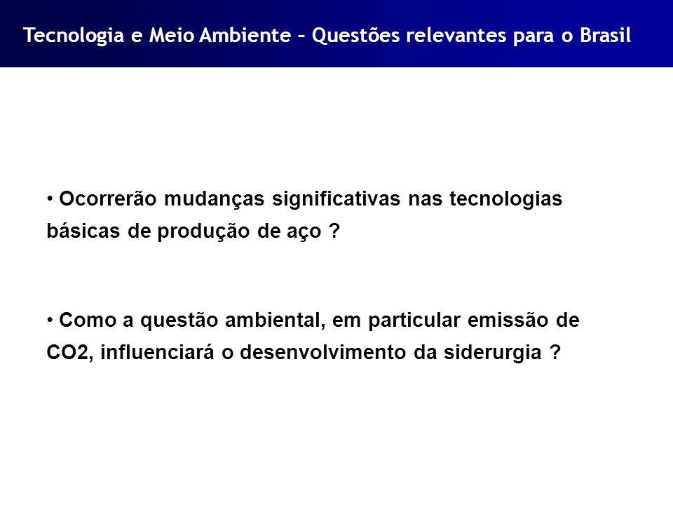 Tecnologia e Meio Ambiente – Questões relevantes para o Brasil Ocorrerão mudanças significativas nas tecnologias básicas de produção de aço ? Como a q