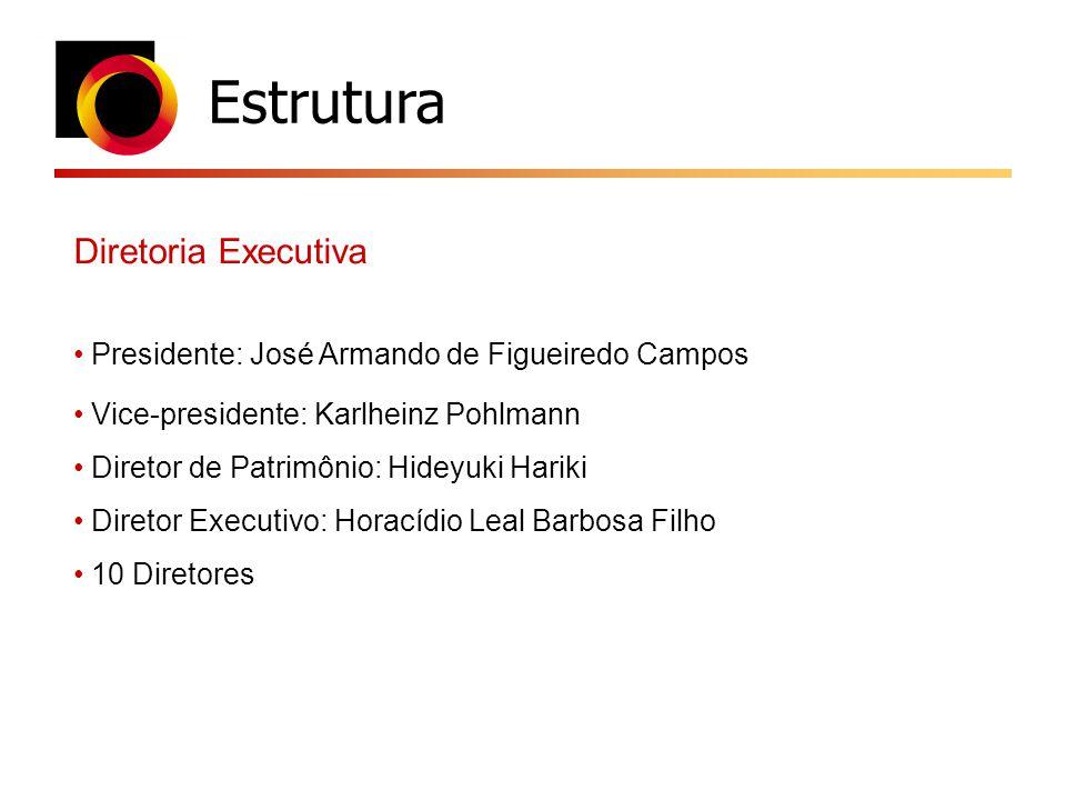 Estrutura Diretoria Executiva Presidente: José Armando de Figueiredo Campos Vice-presidente: Karlheinz Pohlmann Diretor de Patrimônio: Hideyuki Hariki