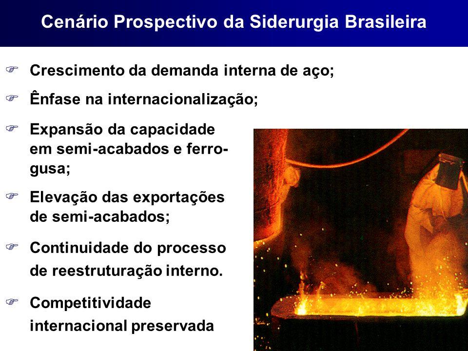 FCrescimento da demanda interna de aço; FÊnfase na internacionalização; FExpansão da capacidade em semi-acabados e ferro- gusa; FElevação das exportaç