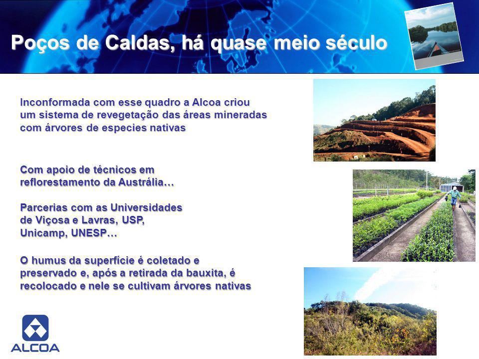 Poços de Caldas, há quase meio século Inconformada com esse quadro a Alcoa criou um sistema de revegetação das áreas mineradas com árvores de especies