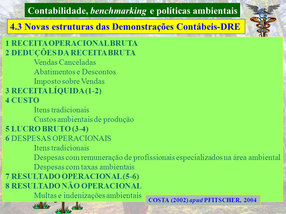 Contabilidade, benchmarking e políticas ambientais 4.3 Novas estruturas das Demonstrações Contábeis-BP RAUPP (2002) e COSTA (2002) apud PFITSCHER, 200