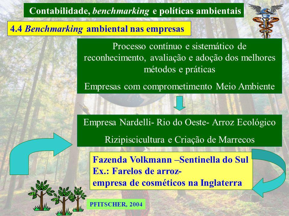 Contabilidade, benchmarking e políticas ambientais 4.3 Novas estruturas das Demonstrações Contábeis-DOAR COSTA (2002) apud PFITSCHER, 2004 2 APLICAÇÕE