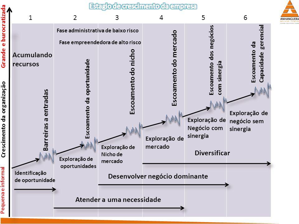 As empresas, de acordo com pesquisas, passam por uma sucessão de estágios no desenvolvimento dos seus negócios. Nem todas evolvem igualmente, algumas