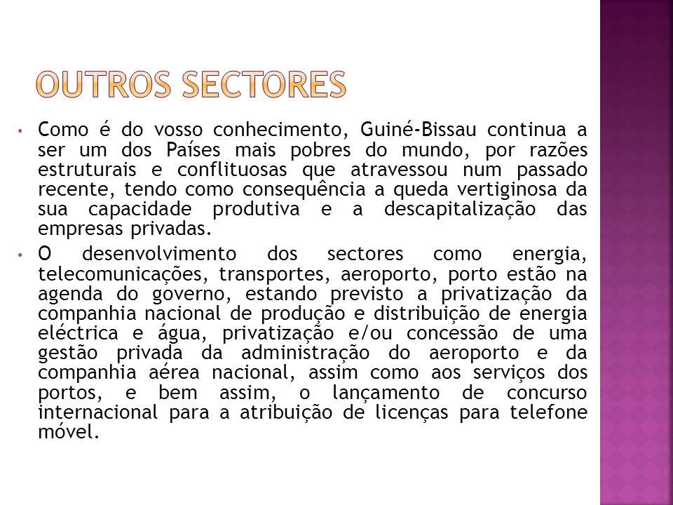 Como é do vosso conhecimento, Guiné-Bissau continua a ser um dos Países mais pobres do mundo, por razões estruturais e conflituosas que atravessou num passado recente, tendo como consequência a queda vertiginosa da sua capacidade produtiva e a descapitalização das empresas privadas.