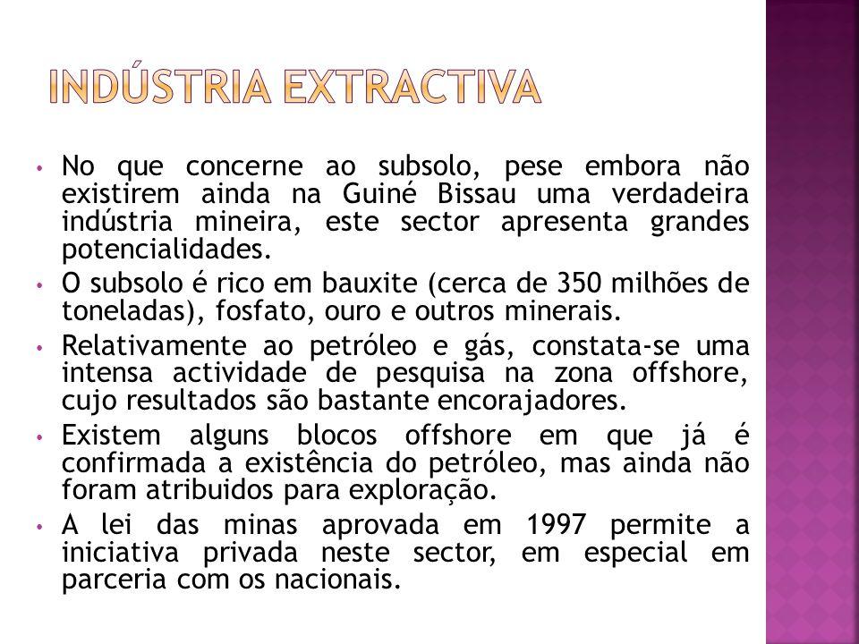 No que concerne ao subsolo, pese embora não existirem ainda na Guiné Bissau uma verdadeira indústria mineira, este sector apresenta grandes potencialidades.