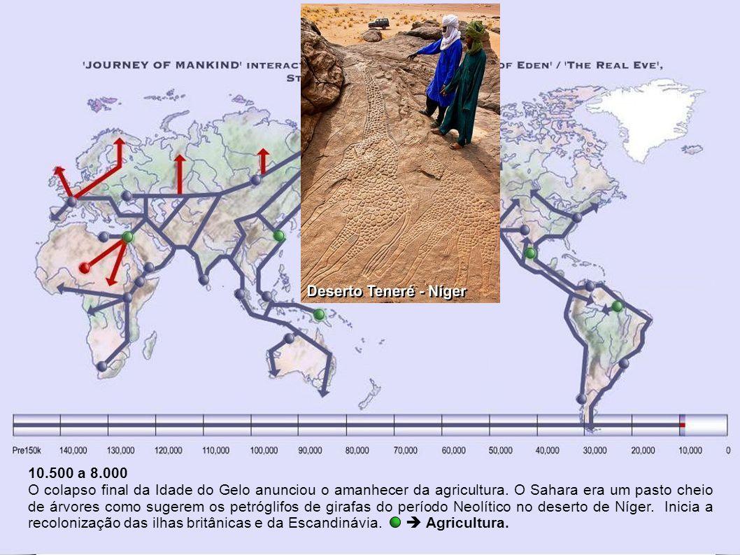 12.500 a 10.000 – Reocupação da América do Norte O gelo retrocedeu do sul para o norte.