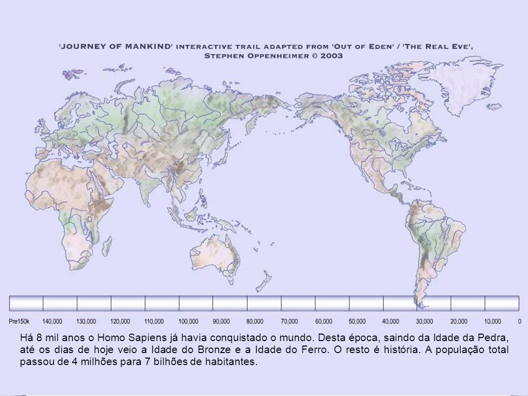 10.500 a 8.000 O colapso final da Idade do Gelo anunciou o amanhecer da agricultura.