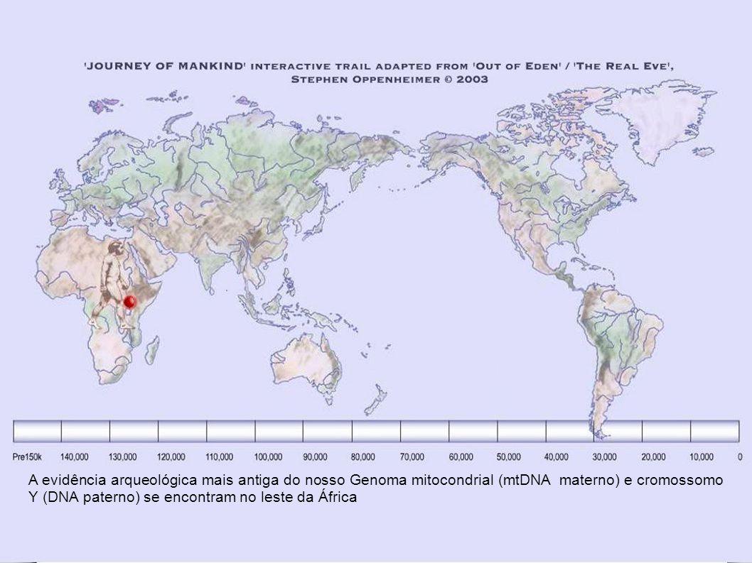 Origens Africanas A mais de 160.000 anos atrás o homem moderno – Homo Sapiens – viveu na África.