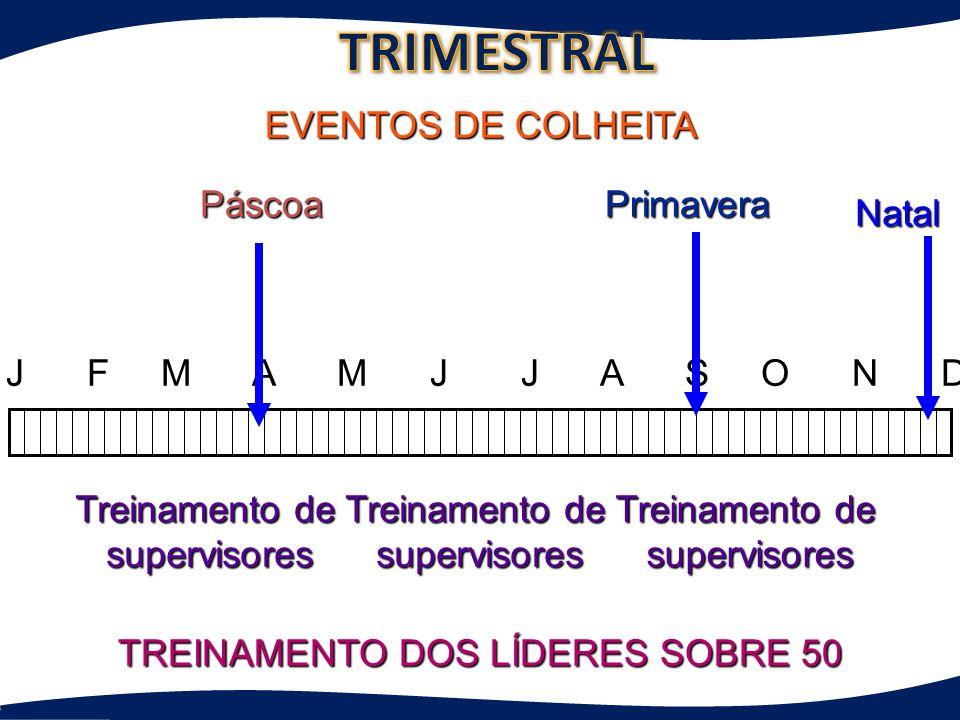 J F M A M J J A S O N D Treinamento de supervisores supervisores supervisores EVENTOS DE COLHEITA TREINAMENTO DOS LÍDERES SOBRE 50 Primavera Natal Pás