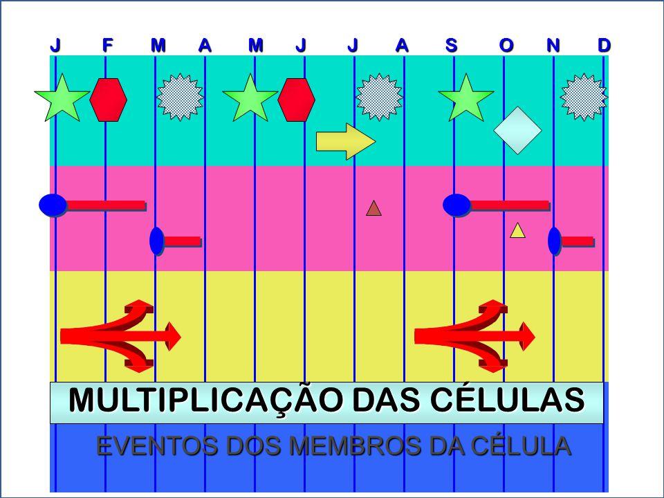 J F M A M J J A S O N D EVENTOS DOS MEMBROS DA CÉLULA MULTIPLICAÇÃO DAS CÉLULAS