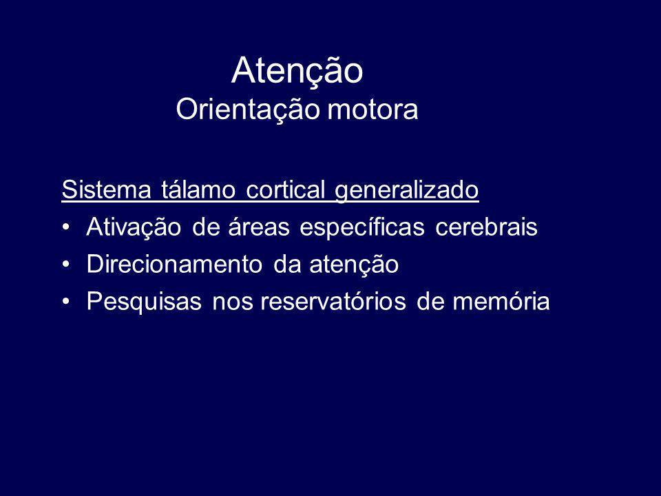 Atenção Orientação motora Sistema tálamo cortical generalizado Ativação de áreas específicas cerebrais Direcionamento da atenção Pesquisas nos reservatórios de memória
