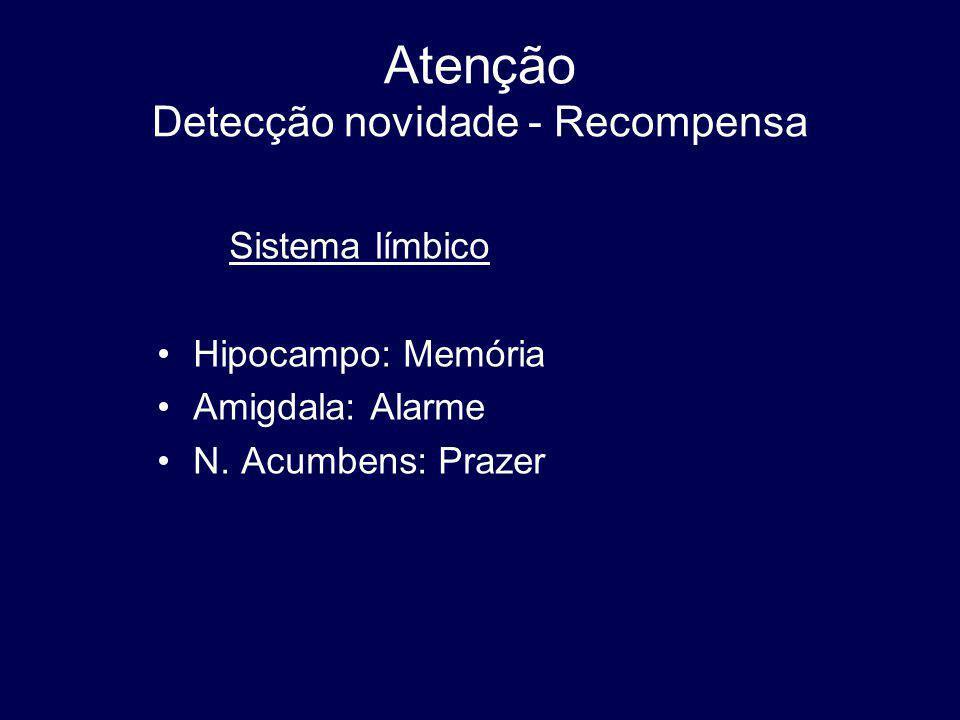 Atenção Detecção novidade - Recompensa Sistema límbico Hipocampo: Memória Amigdala: Alarme N.