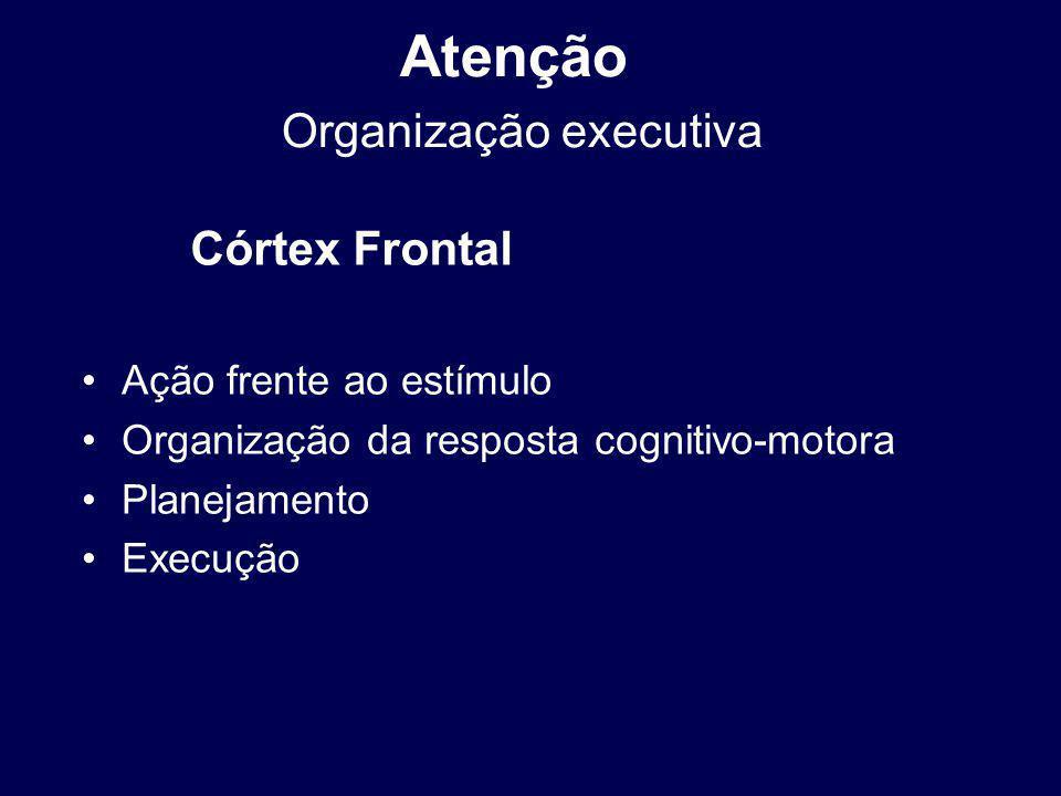Atenção Organização executiva Ação frente ao estímulo Organização da resposta cognitivo-motora Planejamento Execução Córtex Frontal