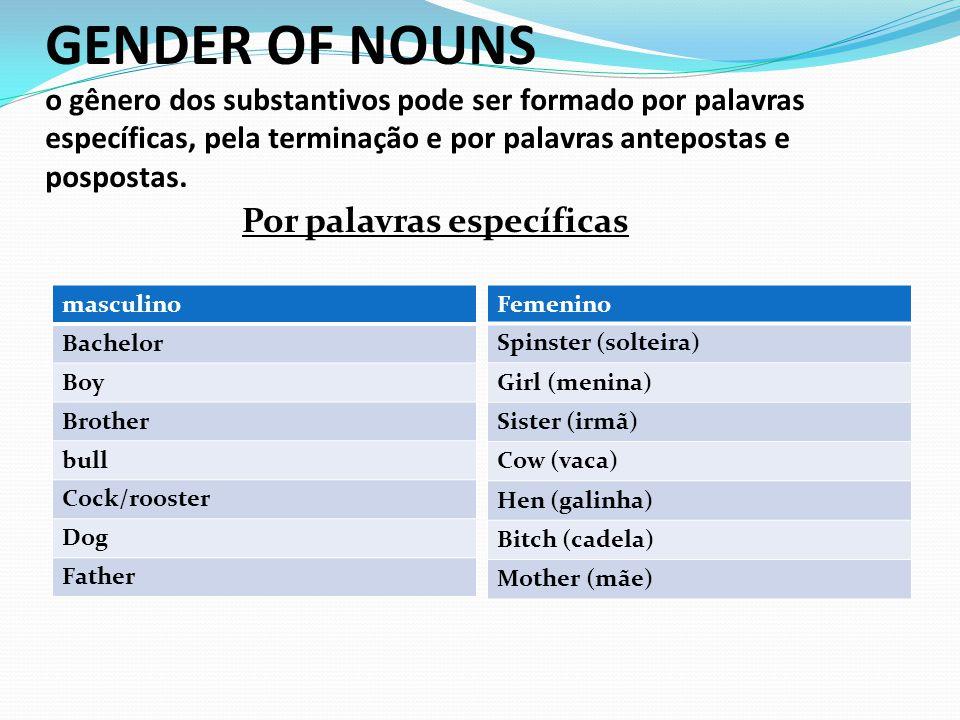 GENDER OF NOUNS o gênero dos substantivos pode ser formado por palavras específicas, pela terminação e por palavras antepostas e pospostas.